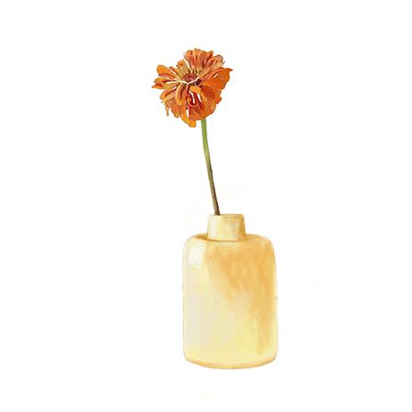 Jar | Jarro