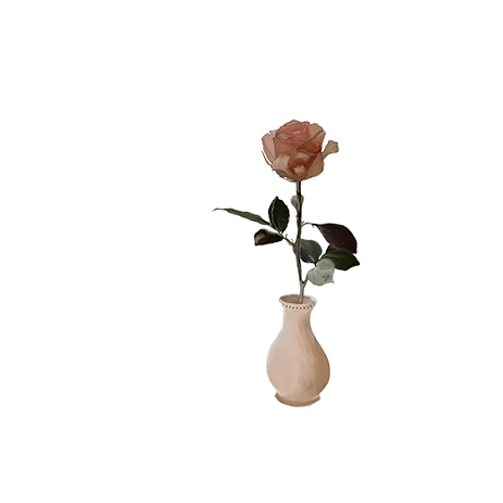 The Rose | Rosa